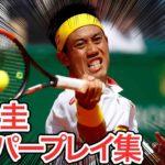 【テニス】やっぱり凄い!錦織圭のスーパープレイ集【衝撃】