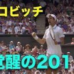 【ジョコビッチ】エグすぎる覚醒,2011年を紹介!無敵ジョコビッチはここから始まった【スーパープレイ】