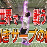 [テニス] 日本代表の西岡良仁のサーブ