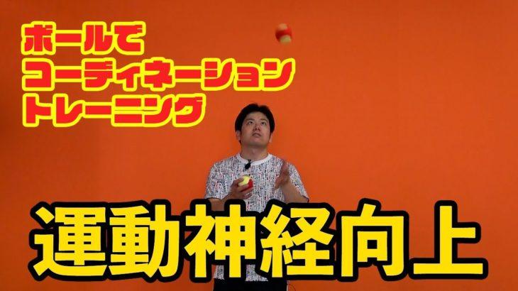 ボール遊びでコーディネーション 上向き編   Tennis Rise レッスン動画