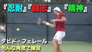 【テニス】闘志、精神、忍耐、かつてこの世の全てを手に入れたかもしれない男、闘士王【フェレール】tennis ferrer practice