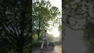めざせ!! #フェデラー #SDGs #藤枝市 #テニス #健康 #スポーツリズム #壁打ち #股抜き #ヨネックス #トゥウィーナー #EZONE #SONICAGE