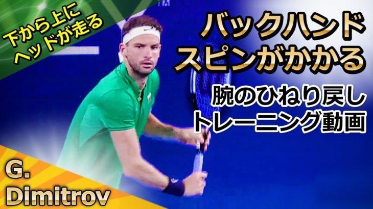 <テニスメディア 注意喚起>『非常識なテニス上達理論』「【片手バック】片手のスピンがかかる!ヘッドが落ちて上がる腕の使い方説明&トレーニング」