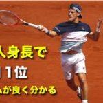【テニス】日本人平均身長で、世界11位!シュワルツマン最高!!【スーパープレイ】tennis schwartsman