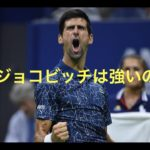 【Novak】約3分でわかるジョコビッチの凄さ。【Djokovic】