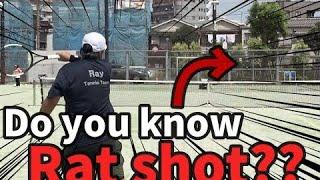 <テニスメディア 注意喚起>『Ray Tennis Team』「【シュート回転を掛けてエースを狙え!】ラットショットのコツ!!」