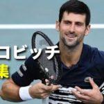 【テニス】ジョコビッチの凄まじい強さが分かる、神業集!!【ジョコビッチ】tennis djokovic