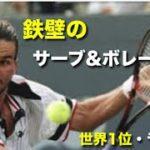 【テニス】鉄壁!芸術サーブアンドボレーで世界1位を獲得!パトリック・ラフターを紹介!【サーブアンドボレー】tennis serve and volley