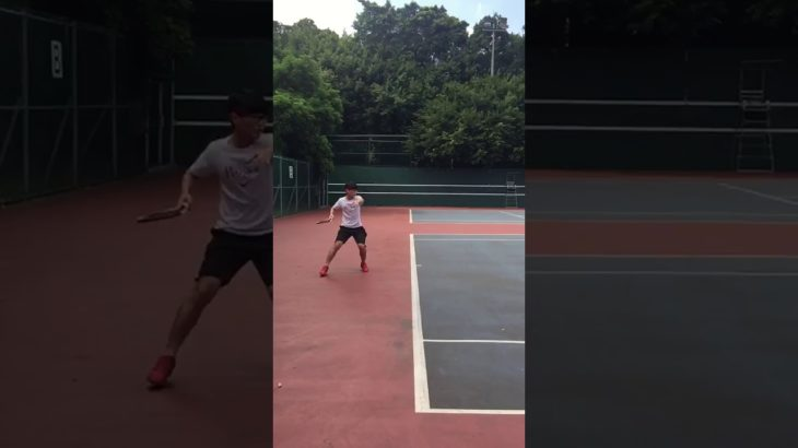 Forehand Return   Tennis テニス 網球 网球 🎾