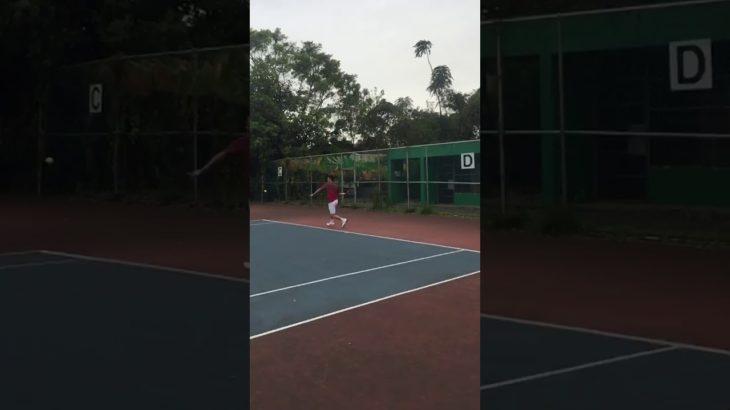 Tennis テニス 網球 网球 🎾