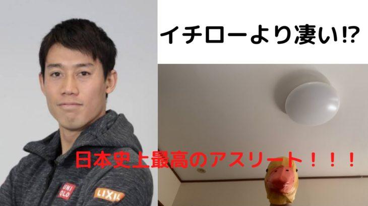 【年収40億】錦織圭の偉大さについて徹底解説!!!【テニス】