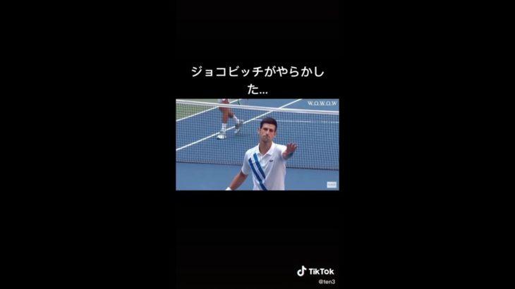 [テニス]ジョコビッチの放ったボールが・・・