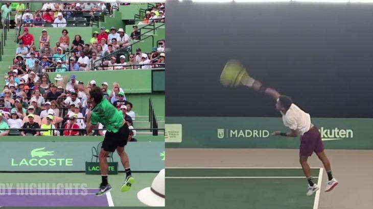Roger Federer and Felix Auger-Aliassime Comparison フェデラーとアリアシムの比較動画