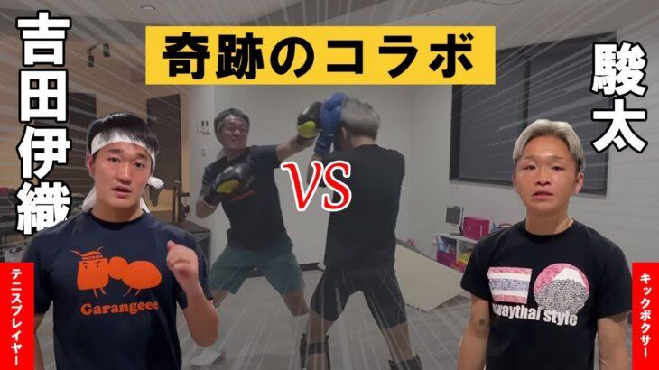 ジョコビッチで一躍有名に‼︎吉田伊織とガチスパー‼︎日本ランキング167位の身体能力はいかに?