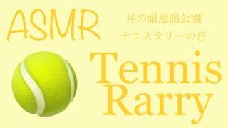 【ASMR】テニスラリー / Tennis rally