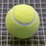 テニス ATPカップ アルゼンチン戦 錦織と西岡 連敗 日本敗れる | NHKニュース
