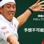 【テニス】錦織圭のドロップショットを再現してみた!!