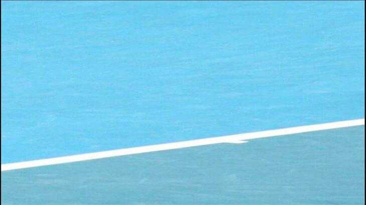 ジョコビッチvメドベージェフ、世代交代なるか?! 絶対女王降臨?全豪オープン2021を振り返る!【ほぼラジ】【雑談】【テニス】