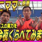 【テニス】ゆっこママ参戦!ガチでうまいゆっこママに、おすぎがガンガン責められる!【頂道#12】【Tennis】#ゆっこママ #まさゑ #おすぎ