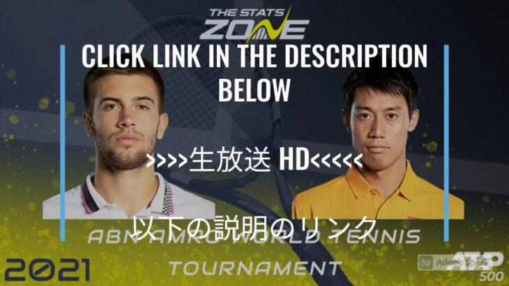 tennis【ライブ】錦織圭 vs ボルナ・チョリッチ 生放送   ABNアムロ世界テニストーナメント2021