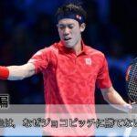 【予告編】錦織圭はなぜ,ジョコビッチに勝てなくなったのか 〜戦術的な観点から〜 【テニス戦術】