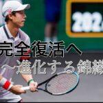 【テニス分析】錦織圭の新スタイルを徹底分析! 目指すはフェデラー!? 錦織圭 vs デミノー