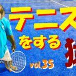 世界初!テニスをする猿 3年間の軌跡 MONKEY TENNIS vol.35