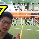 【TENNIS/テニス】ボレーに適したストリング7選/7 strings suitable for volley