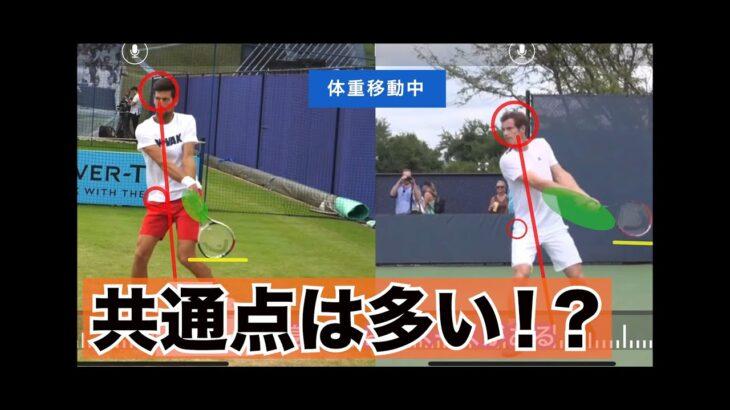 [テニス]ジョコビッチ&マレーバックハンド徹底比較!!