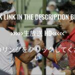 錦織圭 vs ファビオ・フォニーニ テニス