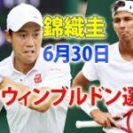 錦織圭 vs A・ポピリン | ウィンブルドン選手権 男子シングルス1回戦