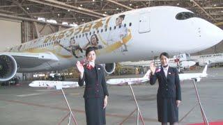 五輪盛り上げへ特別塗装   日航機、羽田で公開