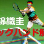 【テニス】錦織圭のバックハンドの技術を解説。