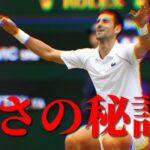 【テニス】ジョコビッチはなぜ強い?【解説・分析】