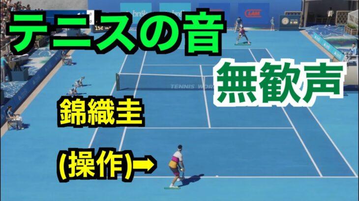 【テニスの音】錦織圭VSナダル(COM) Tennis World Tour 2 音フェチ【ASMR】