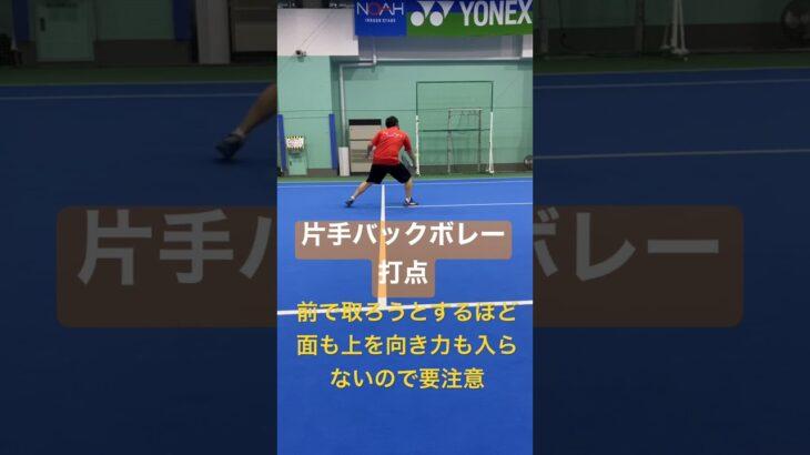 片手バックボレーが浮いたら困る#shorts #tennis #テニス #love