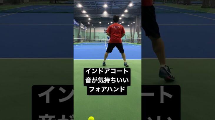 インドアの打球音の反響は気持ちいい♪#shorts #tennis #テニス #love