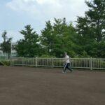 【卓球】【テニス】違い❗❓イレギュラーバウンドする時もある❗❓(tabletennis)(tennis)difference#Shorts